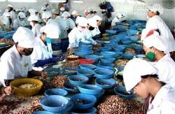 Kinh tế Việt Nam sẽ trật đường ray phát triển nếu chậm trễ