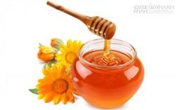 Mật ong trở nên độc hại khi nào?