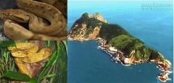 """Rùng mình trước 10 hòn đảo """"tử thần"""" trên thế giới"""