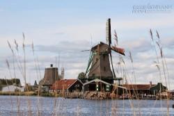 Xứ sở cối xay gió thanh bình ở Hà Lan