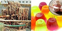 Kinh hoàng với quy trình sản xuất kẹo dẻo bẩn không thể tả