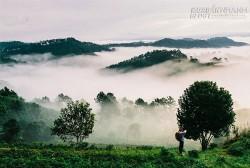 Mùa mây Đà Lạt thu hút các tay săn ảnh