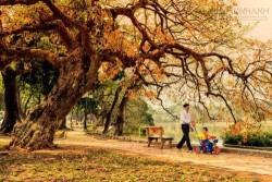 5 điểm du lịch tuyệt nhất mùa thu Việt Nam