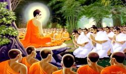Có thực là Không biết không có tội? Phật tổ đã trả lời thế nào?