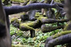 Khu vườn điêu khắc ma quái ở Phần Lan