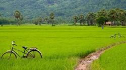 Báo Pháp bình chọn 10 điều hấp dẫn nhất Việt Nam