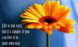 4 lời khuyên cuộc sống đơn giản nhưng thấm!