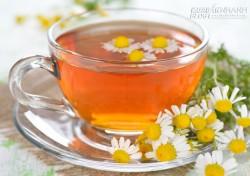 4 loại trà giúp bạn giảm đau họng tức thì