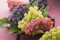 Bạn đã biết trăm điều lợi của trái nho chưa?