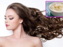 Công thức trong bếp dưỡng tóc dài nhanh trong 2 tuần