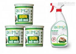 Sơn đuổi muỗi Antimos thay thế tinh dầu đuổi muỗi