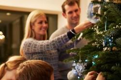 Cảnh báo cây thông Noel có thể trở thành kẻ giết người thầm lặng trong gia đình bạn