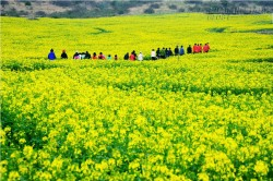 10 điều tuyệt vời của đảo Jeju đốn tim du khách