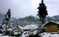 Mãn nhãn khung cảnh mưa tuyết phủ kín thị trấn Sa Pa