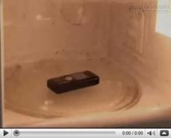 Bạn không tin thứ này có thể xuất hiện khi cho điện thoại vào lò vi sóng?