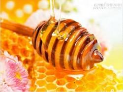 Những người dùng mật ong sẽ mang họa vào thân
