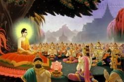 Lời Phật dạy về đạo làm người để tránh mọi tai ương