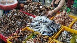 Bật mí 4 điểm mua hải sản cực rẻ, tươi, ngon tại Sài Gòn