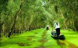 Những điểm đến thú vị nhất ở An Giang