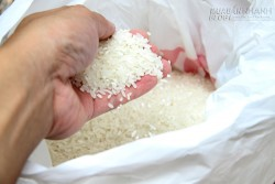 Cách nhận biết gạo ngậm nhiều hóa chất – điều ai cũng cần