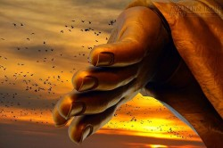 Phật chỉ 7 điều giải trừ lòng ghen tỵ để cuộc sống an yên