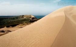 Kinh hãi với đụn cát khổng lồ nuốt gọn cả giáo xứ ở châu Âu