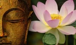 Câu chuyện giữa đức Phật và đệ tử: Kiếp trước mình là người như thế nào?