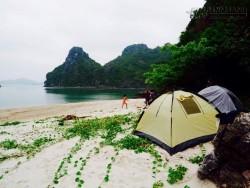 Chuyến phiêu lưu trên hoang đảo Mắt Rồng