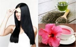 Giúp tóc nhanh dài, bóng mượt với 7 món trà tự nhiên