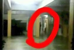 Toàn trường học phải đóng cửa sau khi cả học sinh và giáo viên lần lượt thấy điều này trên hành lang
