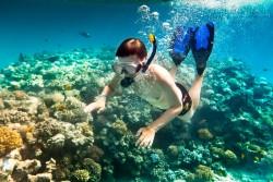 5 địa điểm lặn lý tưởng cho kỳ nghỉ 30-4 tại Việt Nam