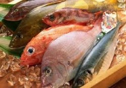 Cách phân biệt cá bị nhiễm độc và cá tươi