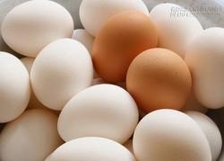 Những hiểu lầm tai hại về trứng gà hàng triệu người dân mắc phải