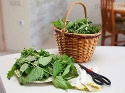 Lưu truyền 5 bài thuốc chữa sỏi thận từ nguyên liệu tự nhiên cực kỳ hiệu quả