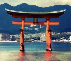 Torii - cánh cổng đến thế giới thần linh ở Nhật Bản