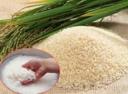 Mách bạn cách chọn gạo sạch giữa cơn bão thực phẩm bẩn