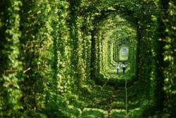 Chuyện chưa biết về Đường hầm tình yêu tại Ukraina