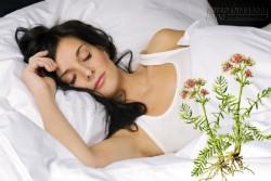 Tuyệt chiêu làm mát cơ thể thoải mái ngủ ngon mặc trời nóng bức