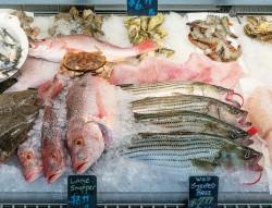 Mẹo phân biệt hải sản ngậm hóa chất