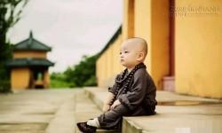 Ganh tỵ vì người khác giỏi hơn, chàng thanh niên nhận được bài học đắt giá từ nhà sư