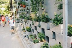 Nhóm sinh viên Hà Nội biến bãi rác dọn 10 năm không sạch thành một vườn hoa