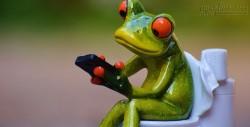 Mắc bệnh trĩ, táo bón chỉ vì dùng điện thoại trong khi đi vệ sinh