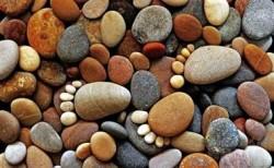 Sống như hòn đá hay cục gạch? Bài học thâm thúy của Lão Tử khiến ông lão thọ 106 tuổi im bặt