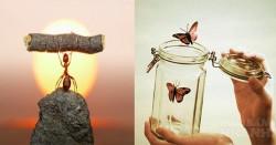 10 bí quyết để có nội tâm mạnh mẽ, sống cuộc đời hạnh phúc