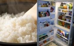 Mẹo dùng tủ lạnh, nồi cơm điện giảm hóa đơn tiền điện 1 nửa