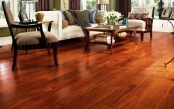 Sàn gỗ chống mọt