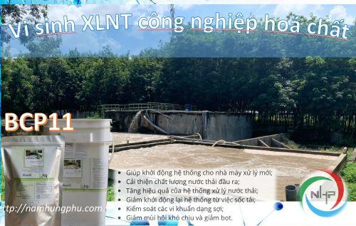 Nguồn gốc và ảnh hưởng của nước thải cao su đến môi trường, 96639, Trangtrannhp, Blog MuaBanNhanh, 25/02/2021 16:31:09