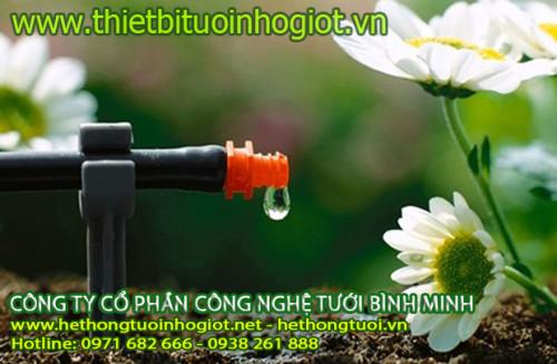 Hệ thống tưới nhỏ giọt, công dụng tưới nhỏ giọt gia đình, cách tưới cây nhỏ giọt, hệ thống tưới nhỏ giọt tây ban nha, 95894, Văn Đạt, Blog MuaBanNhanh, 29/10/2020 12:07:20