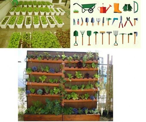 Những dụng cụ trồng rau sạch tại nhà cần thiết để đạt hiệu quả nhất, 77145, Công Ty Quang Anh, Blog MuaBanNhanh, 28/12/2017 11:41:50