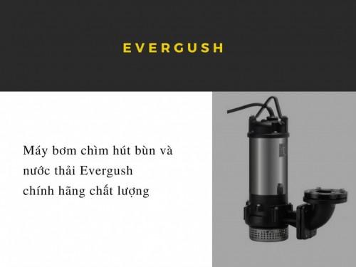 Máy bơm chìm hút bùn và nước thải Evergush chính hãng chất lượng, 77809, Yến Nguyễn - 0125 900 6752, Blog MuaBanNhanh, 28/12/2017 12:09:56